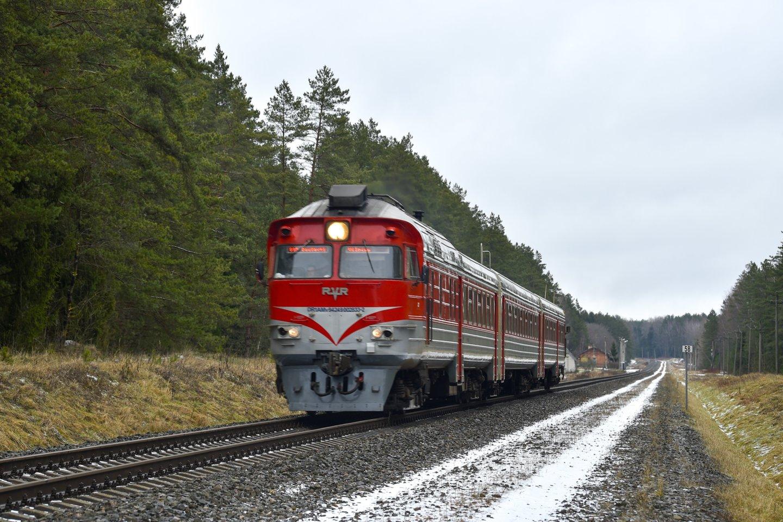 """""""Lietuvos geležinkelių"""" atstovas spaudai Tomas Digaitis pripažino, jog traukinys patyrė techninių gedimų.<br>V.Ščiavinsko nuotr."""
