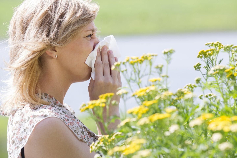 Karščiai turėjo įtakos alergiškiems žmonėms. Pacientai užplūdo gydytojus alergologus su skundais.<br>123rf.com asociatyvi nuotr.