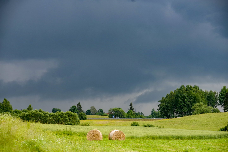 Vasariška šiluma iš Lietuvos nesitrauks, bet kai kur užklys lietaus debesys ir perkūnija.<br>V.Ščiavinsko nuotr.