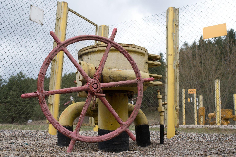 """Varšuva ir Kijevas perspėja dėl """"Nord Stream 2"""" grėsmių Vidurio Europai.<br>V.Ščiavinsko nuotr."""