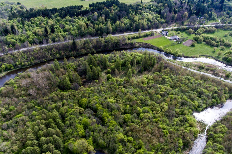 Dubysos slėnis<br>V.Ščiavinsko nuotr.