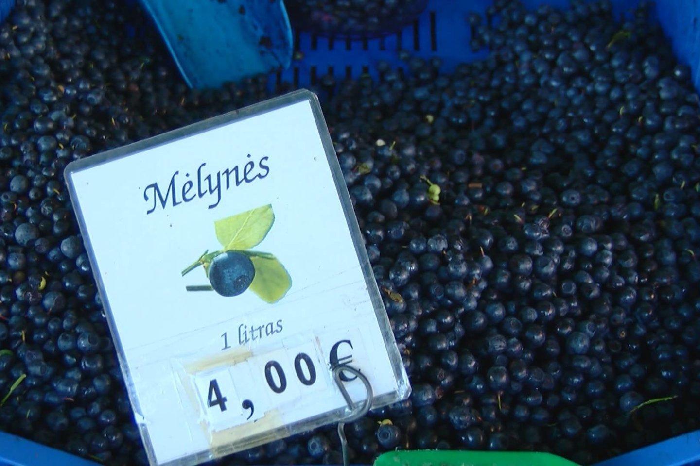 Turguje už litrą mėlynių vieni prašo 3, kiti – ir 5 eurų.<br>Stop kadras