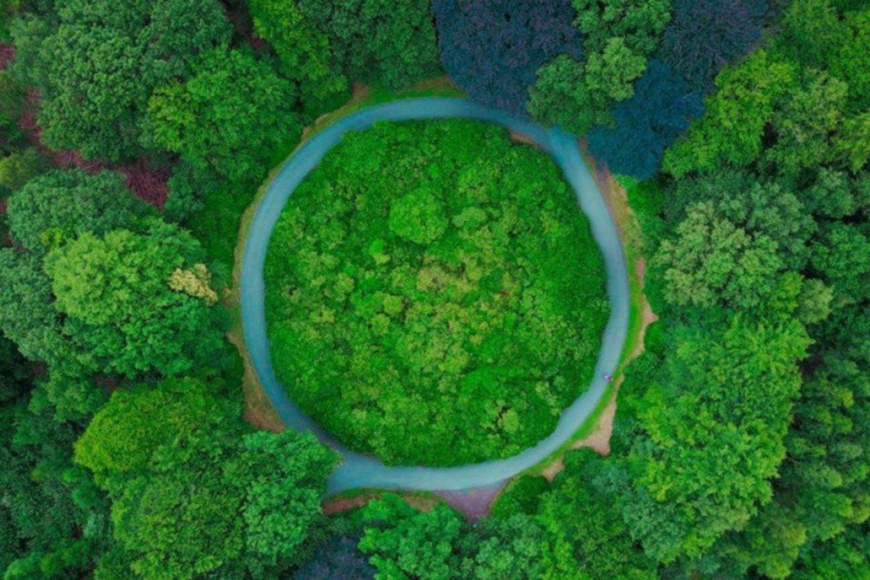 Žengtas svarbus žingsnis skatinant viešuosius žaliuosius pirkimus ir tobulinant jų sistemą.<br>Aplinkos ministerijos nuotr.