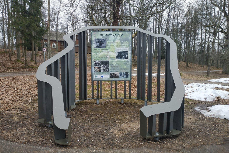 Stelmužės ąžuolas (info centras).<br>VSTT nuotr.