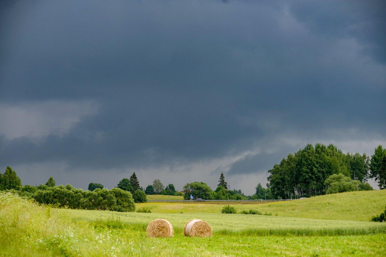 Sinoptikai žada nuostabų savaitgalį: po jo oras kais dar labiau, užkliups liūtys.<br>V.Ščiavinsko nuotr.