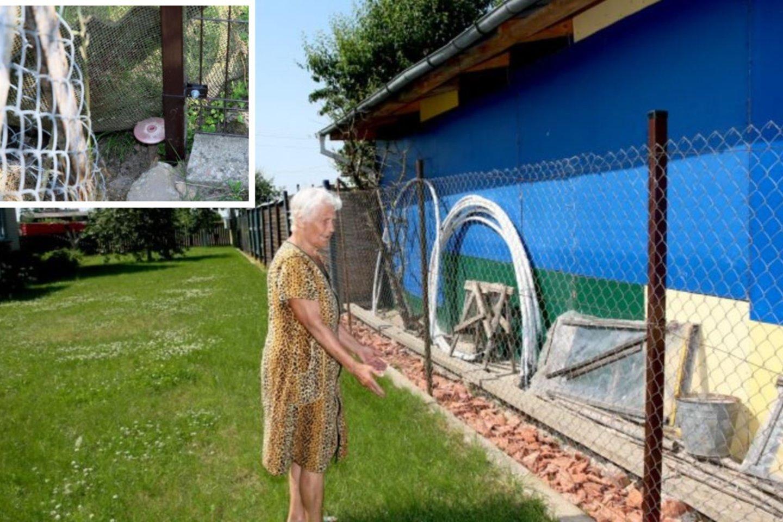 Daugelį savo karingu būdu Panevėžio rajono gyventoja jau daug metų stebinanti senjorė dabar savo taikiniu yra nusižiūrėjusi kaimynus.<br>A.Švelnos nuotr.