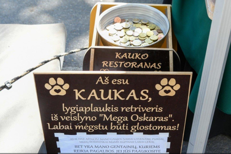 """Išskirtinis Klaipėdos svečias: """"filantropas"""" Kaukas.<br>V.Kesminės nuotr."""