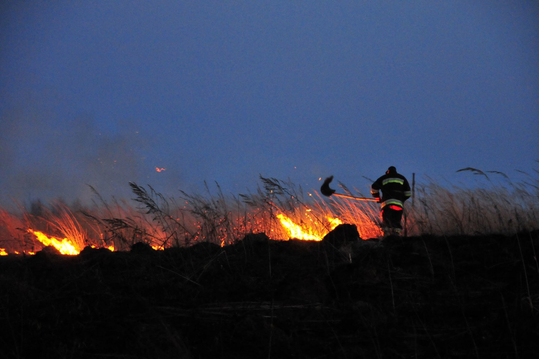 Karščiams neslūgstant, Lietuvoje daugėja gaisrų gamtoje, dažniau dega ražienos ir pievos.<br>A.Vaitkevičiaus asociatyvi nuotr.