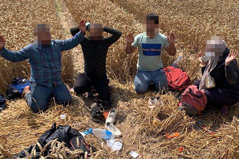 Vykdoma pabėgusių asmenų paieška.<br>VSAT asociatyvi nuotr.