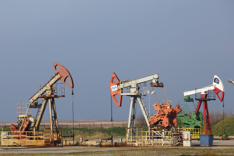 Minijos naftos pumpavimo stotis – tarp Kintų ir Drevernos.<br>V.Balkūno nuotr.