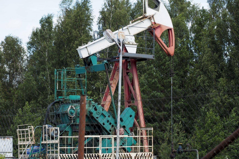 Nafta Lietuvoje išgaunama tik iš sausumoje esančių detaliai išžvalgytų telkinių.<br>V.Ščiavinsko nuotr.