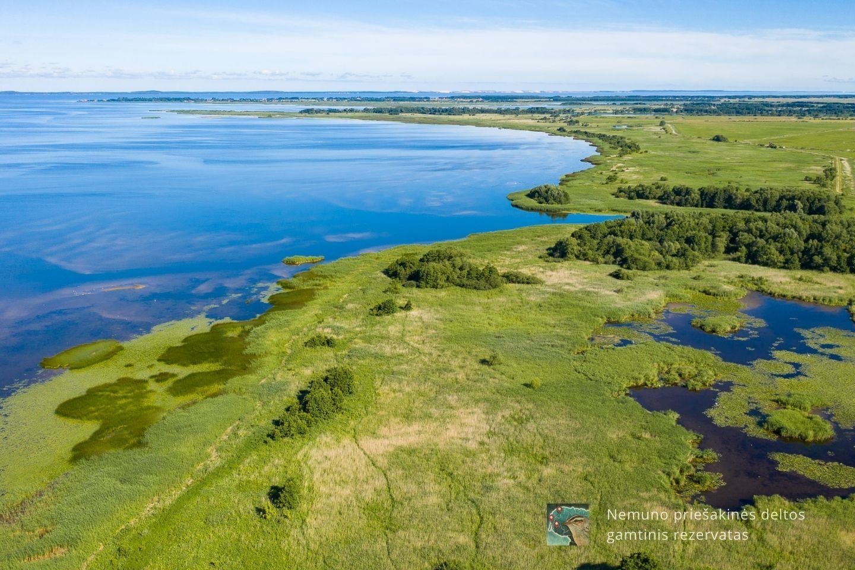 Nemuno priešakinės deltos rezervatas