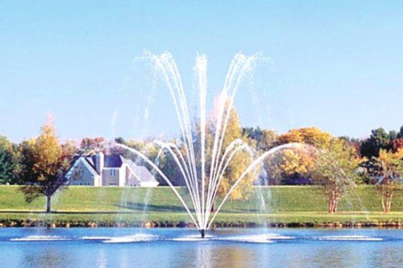 Pastauninko parko tvenkinyje bus įrengtas plaukiojantis fontanas.