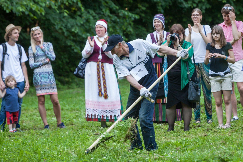 Vilniuje 2015 m. surengtos pirmosios šienavimo varžytuvės.<br>Martyno Ambrazo/ELTA nuotr.