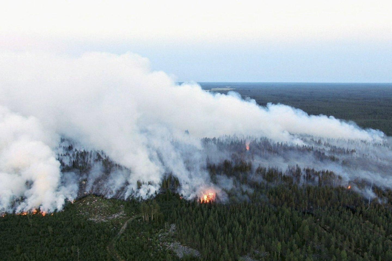 Miškų gaisrai Suomijoje.<br>AFP/Scanpix nuotr.