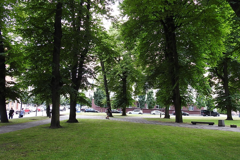 K.Donelaičio skveras - žalia sala uostamiesčio centre.<br>G.Pilaičio nuotr.