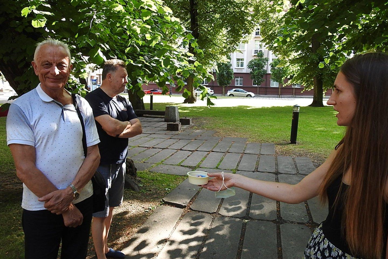 Klaipėdiečiams siūloma įsivaikinti senus medžius.<br>G.Pilaičio nuotr.