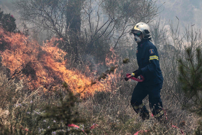 Gaisrai Graikijoje.<br>AFP/Scanpix nuotr.