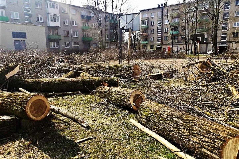 Rumpiškės kvartalo gyventojus pašiurpino kiemai, virtę medienos paruošų punktais.<br>Visuomenininkų nuotr.