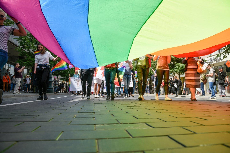 Artėjant LGBT eitynėms Kaune – pareigūnų baimė dėl saugumo, nors Laisvės alėja yra mačiusi visko.<br>D.Umbraso nuotr.