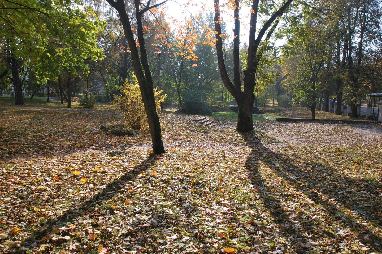 Marijampolės mokytojų seminarijos parkas.<br>Rengėjų nuotr.