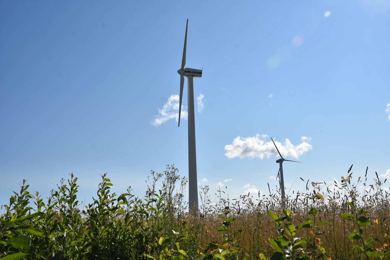 """""""Ignitis"""" plėtos vėjo jėgaines Latvijoje.<br>A.Srėbalienės nuotr."""