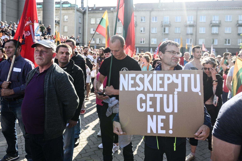 Mitingas prie Seimo baigėsi riaušėmis.<br>V.Skaraičio nuotr.