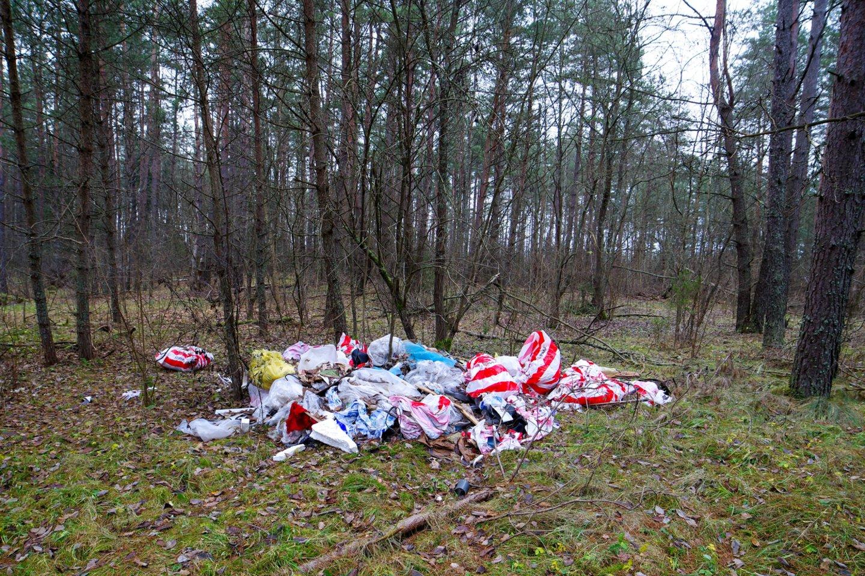 Šalia grybų pintinės pasiimkite ir maišą šiukšlėms: rugsėjį kviečia į miškų švarinimo akciją.<br>V.Ščiavinsko nuotr.