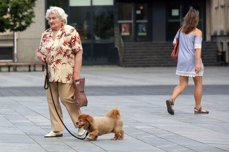 Tikimasi, 2024 metais vidutinė pensija sieks 534 eurus, vidutinė pensija turint būtinąjį stažą sieks 565,7 euro.<br>M.Patašiaus nuotr.