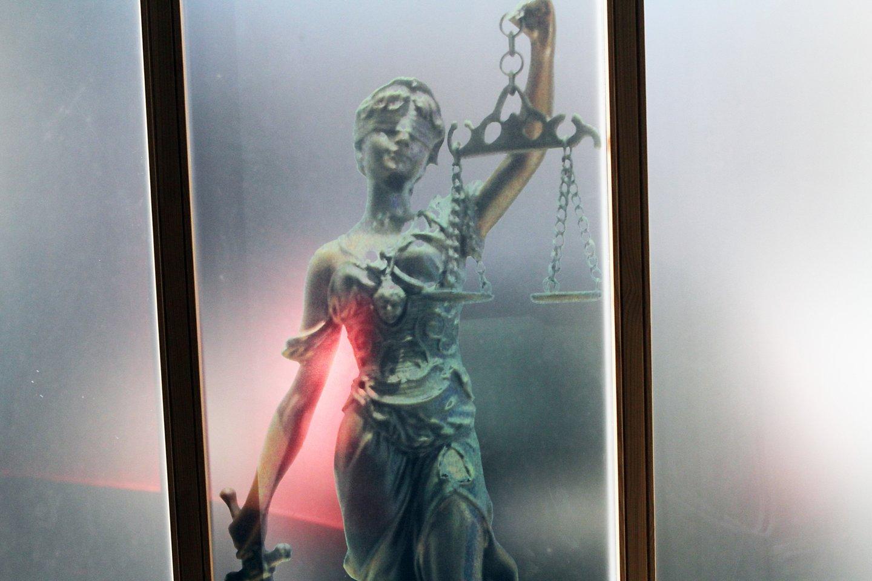 Teismams būna dažnai sunku atskirti kur verslo santykiai, kur nusikaltimas.<br>M.Patašiaus nuotr.