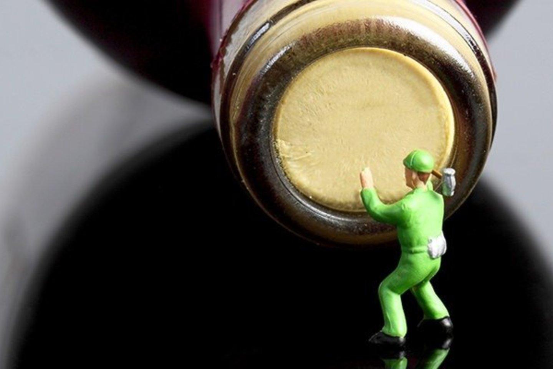 Žmogaus organizme nėra nė vieno organo, kurio neveiktų naikinanti alkoholio įtaka.