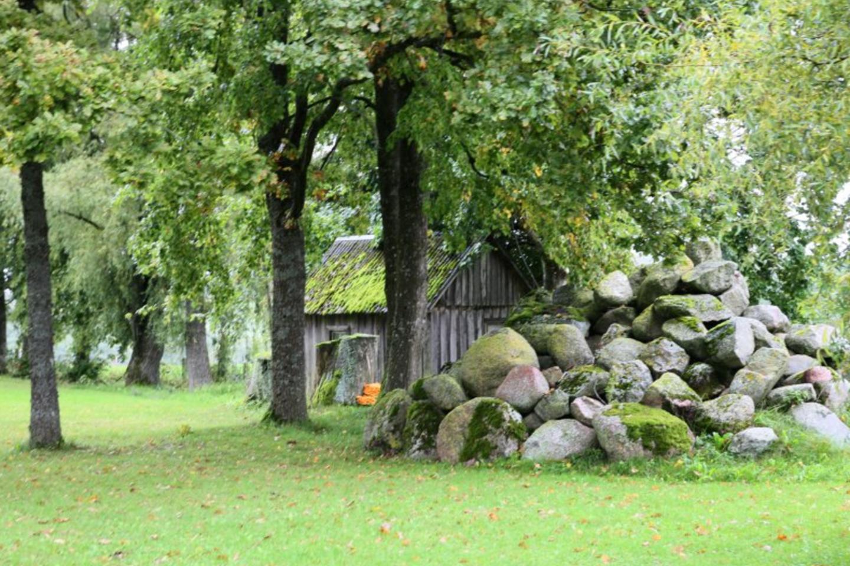 Rekonstruodami seną sodybą ūkininkai pasiliko senų statinių pamatų akmenis, vėliau juos panaudos.<br>A.Švelnos nuotr.