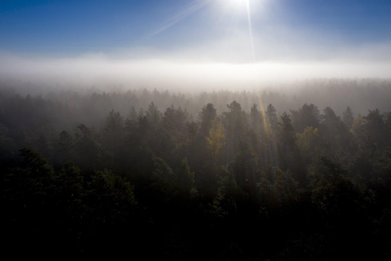 Orai Lietuvoje.<br>V.Ščiavinsko nuotr.