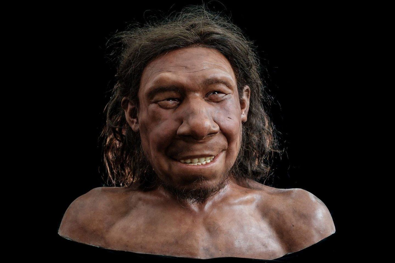 """Nepaisant Krijno diagnozės, naujasis biustas vaizduoja neandertalietį besišypsantį užkrečiančia šypsena.<br>""""Kennis &amp; Kennis Reconstructions"""" iliustr."""