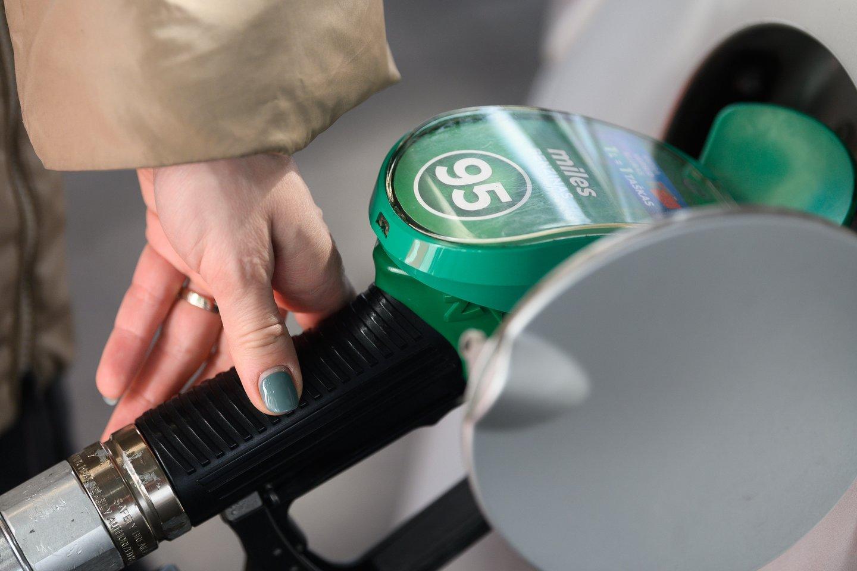 Didžiosios degalinės šalia naftos produktų kainų netrukus turės skelbti palyginamąsias alternatyviųjų degalų kainas.<br>V.Skaraičio nuotr.