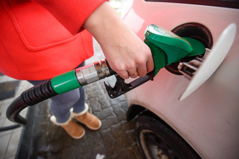 Didžiosios degalinės šalia naftos produktų kainų netrukus turės skelbti palyginamąsias alternatyviųjų degalų kainas.<br>D.Umbraso nuotr.
