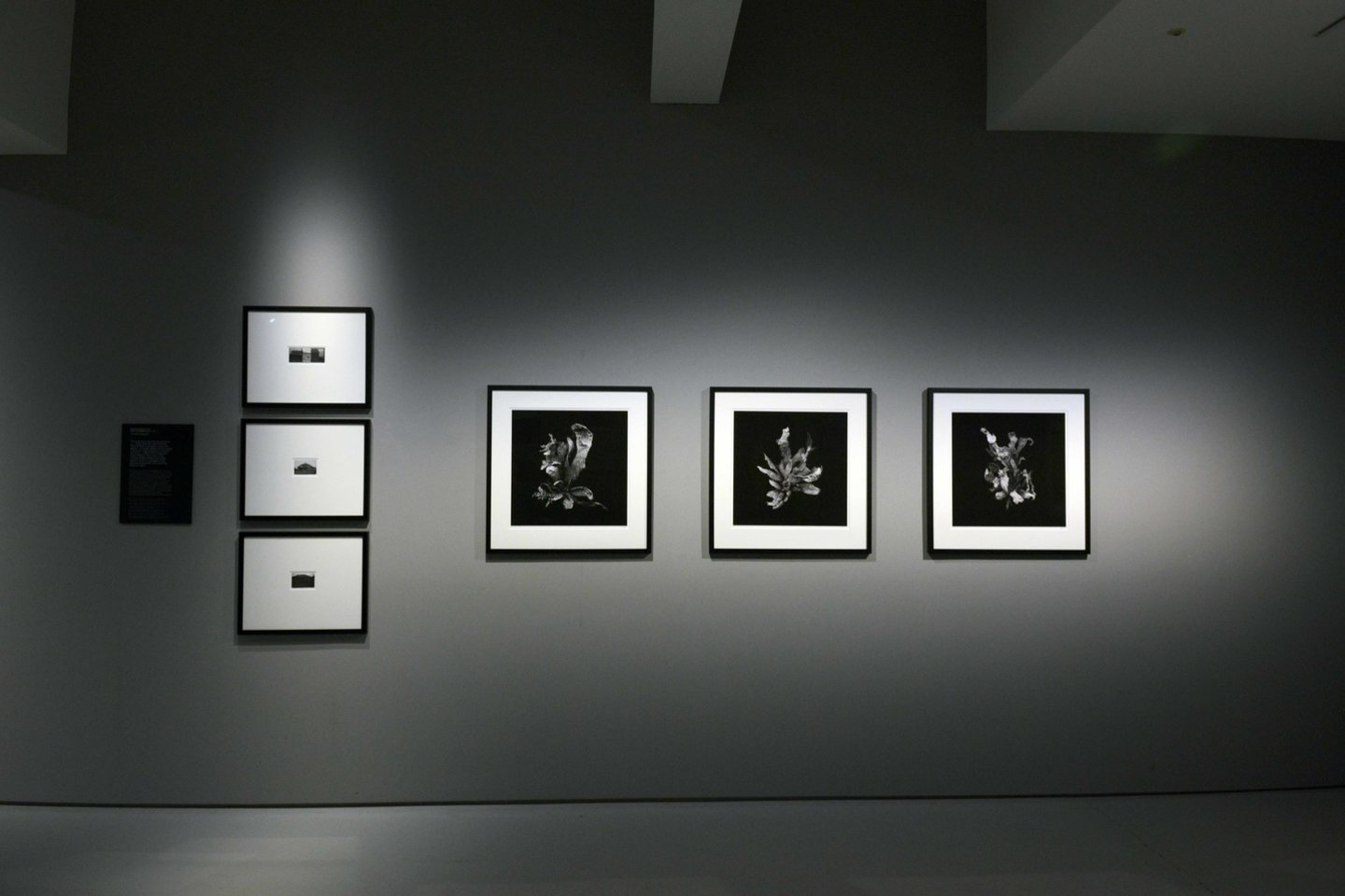 """Paroda""""Uncoverings. The Search for Identity in Lithuanian Photography"""".<br>Seulo fotografijos muziejaus nuotr."""