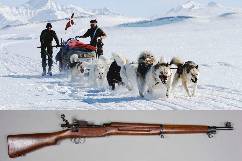 """Šis ypatingas dalinis vadinasi """"Sirijaus šunų rogių patrulis"""" arba daniškai – """"Slædepatruljen Sirius"""""""
