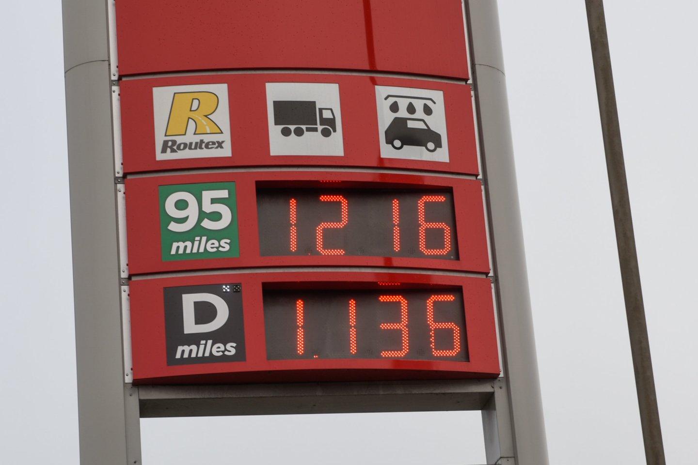 Biodegalų asociacijos prezidentas Mindaugas Palijanskas sako, kad pagrindinių energijos išteklių, tarp jų ir žaliavinės naftos paklausa sparčiai auga, todėl brangsta ir degalai.<br>D.Umbraso nuotr.