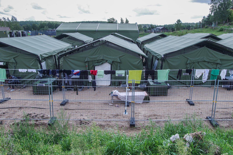 Bandydamas sulaikyti sprunkančius migrantus Pabradėje susižalojo pasienietis.<br>V.Ščiavinsko asociatyvi nuotr.