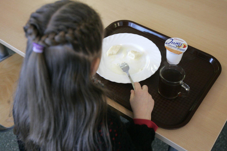 Bus tariamasi dėl galimybių statyti maisto produktų, vartojamų vaikų darželių bei mokyklų auklėtinių maitinimui, sandėlius.<br>V.Balkūno nuotr.