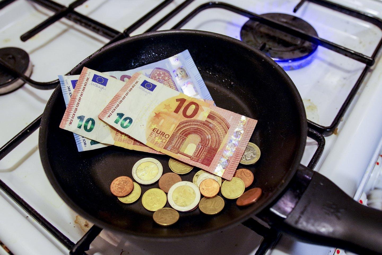 Aiškina, kad padėtų laikinas lengvatinis 9 proc. pridėtinės vertės mokesčio tarifas elektrai bei dujoms.<br>V.Ščiavinsko nuotr.