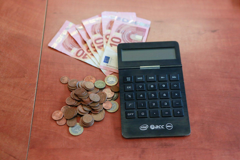 Antrajame etape nepriklausomą tiekėją turi pasirinkti 780 tūkst. namų ūkių.<br>G.Bitvinsko nuotr.