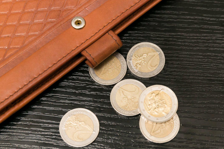 Nuo šių metų pradžios bazinis pareiginės algos dydis kilo vienu euru.<br>T.Bauro nuotr.