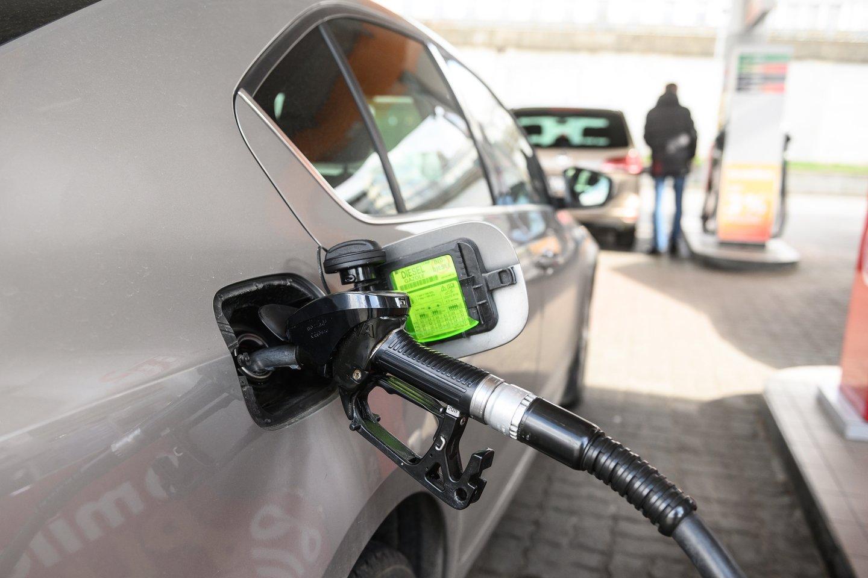Naftos kainoms pakilus iki aukščiausio per kelerius metus lygio, ekspertai sako, kad degalų brangimo tendencijos kol kas išlieka.<br>V.Skaraičio nuotr.