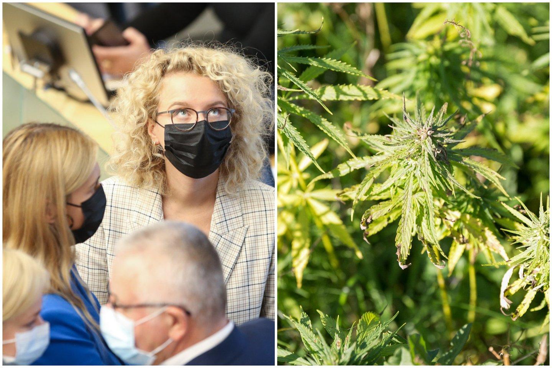 Koalicinei Laisvės partijai – svarbi diena, Seimas ketvirtadienį svarsto siūlymą dekriminalizuoti nedidelio narkotikų kiekio laikymą be tikslo juos platinti.<br>Lrytas.lt koliažas